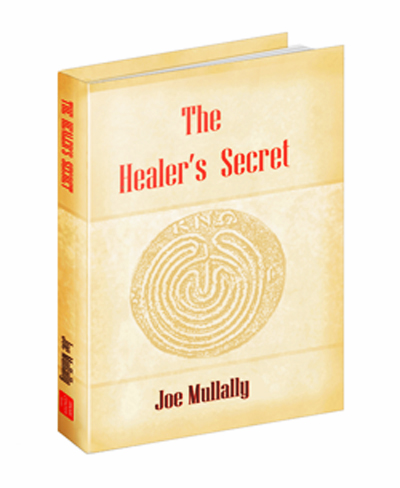 The Healer's Secret book